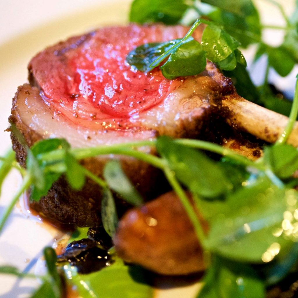 Lamb Rib Chop Plated