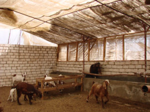 Airy and light gpat shelter