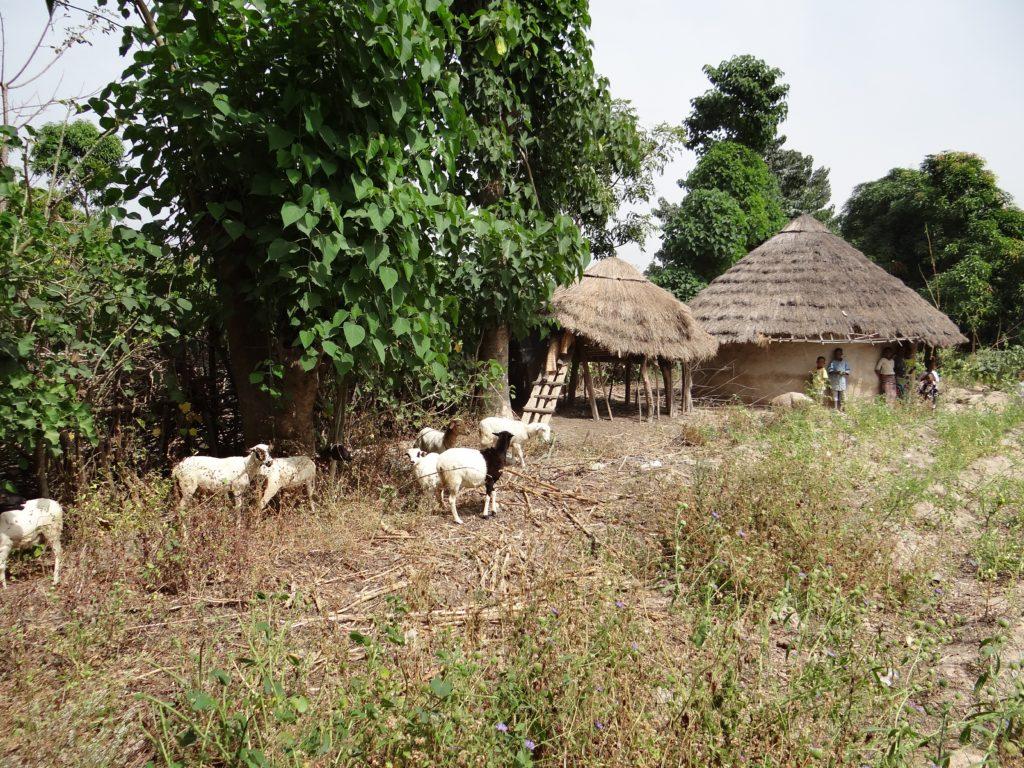 Bissikirima, village near Dabola
