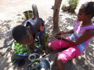 Preparing Cassava vines for stew