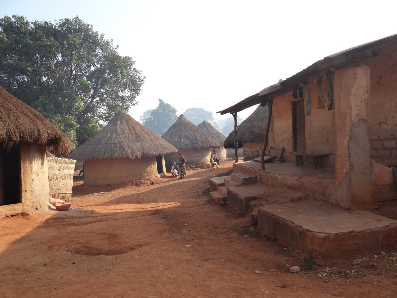 Village of Nialeya, Guinea