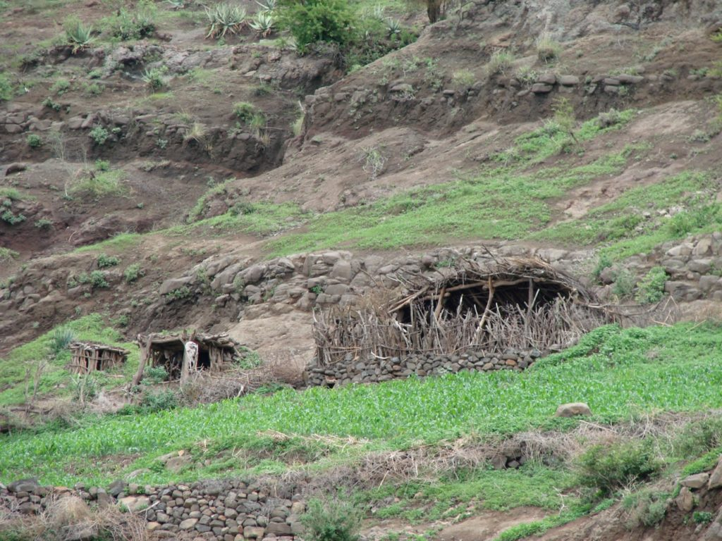 Night shelter for goats