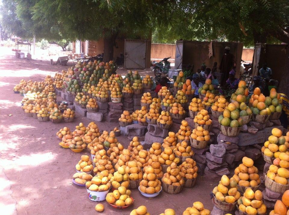 Height of mango season, Mali, W. Africa