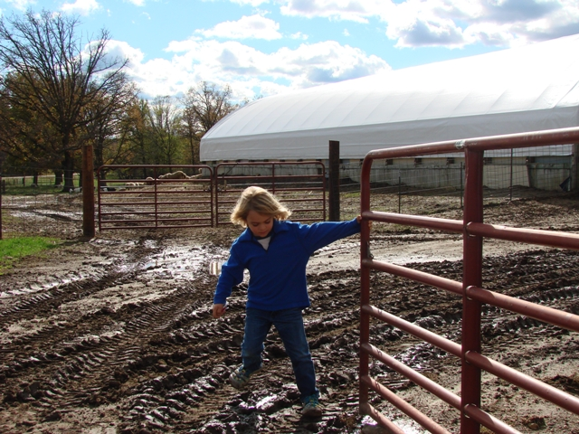 Helping with the gate