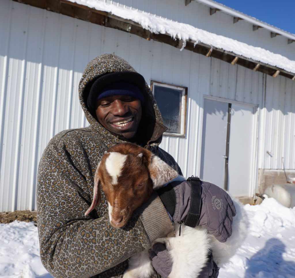Farm visitor with goat kid