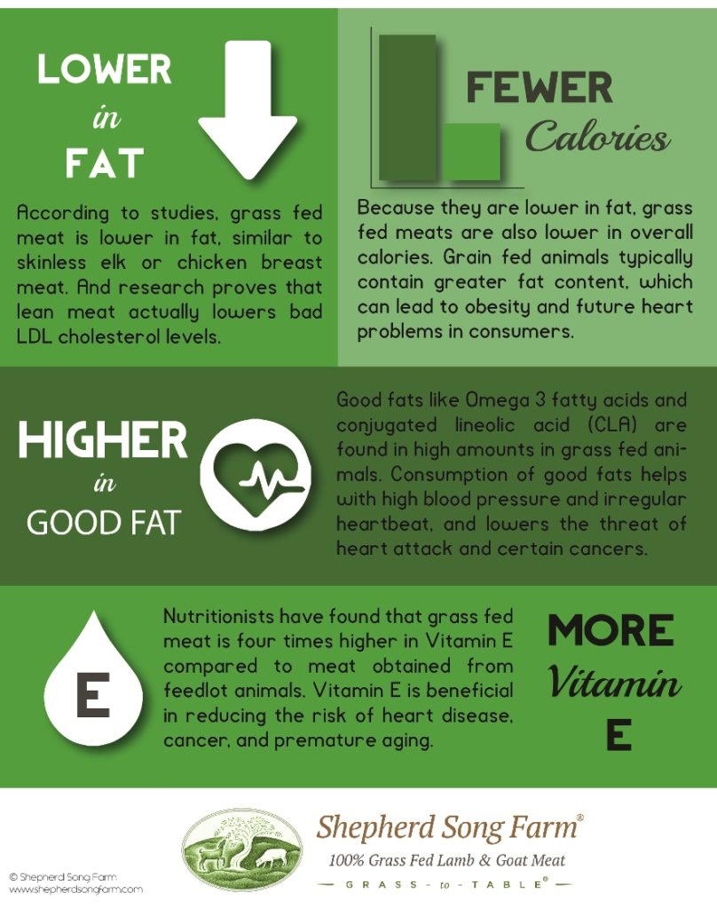 Health Benefits of Grass Fed Meats Infographic