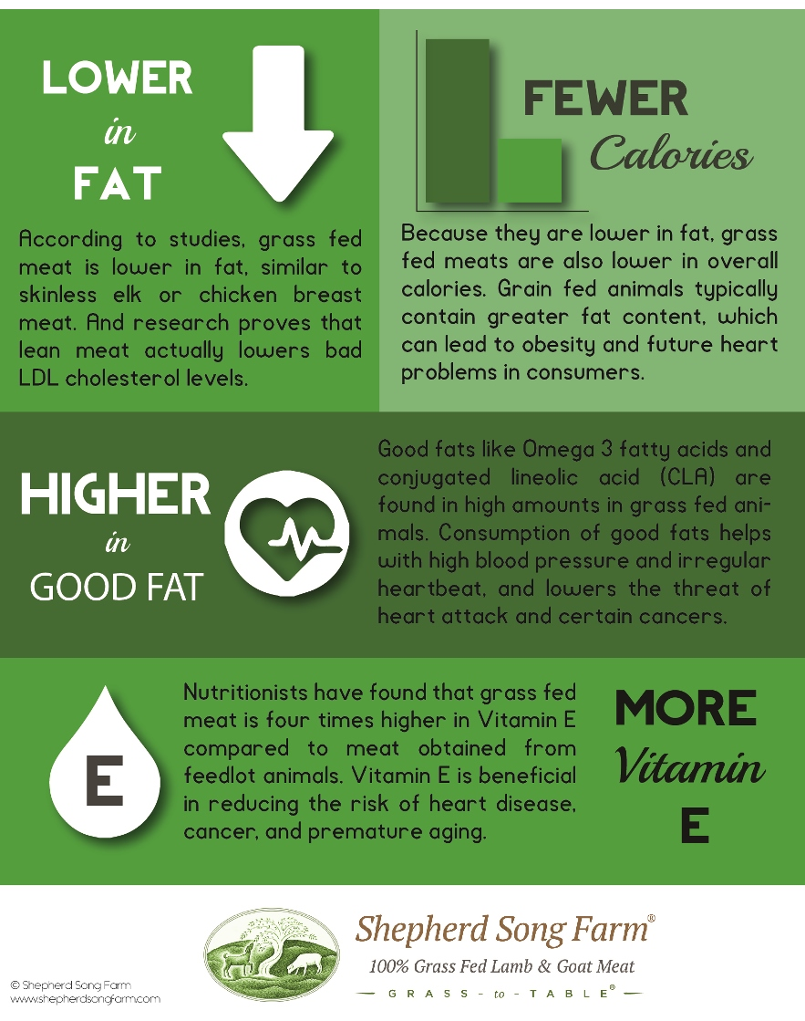 Health Benefits of Grass Fed Meats (Infographic