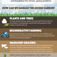 Healthy Soil Infographic
