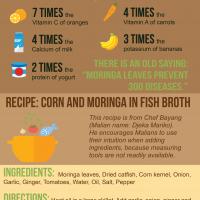 Health benefits of moringa infographic