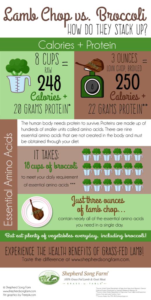 Lamb Chop vs. Broccoli