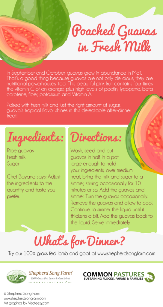Guavas in Fresh Milk (Infographic)