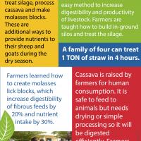 Mali Farmer-Farmer infographic 3
