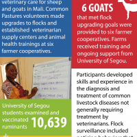 Farmer-to-Farmer Mali Common Pastures Infographic 4