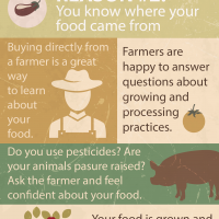 Farm fresh is best: know your food infographic