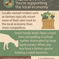 Farm Fresh is best: support the local economy