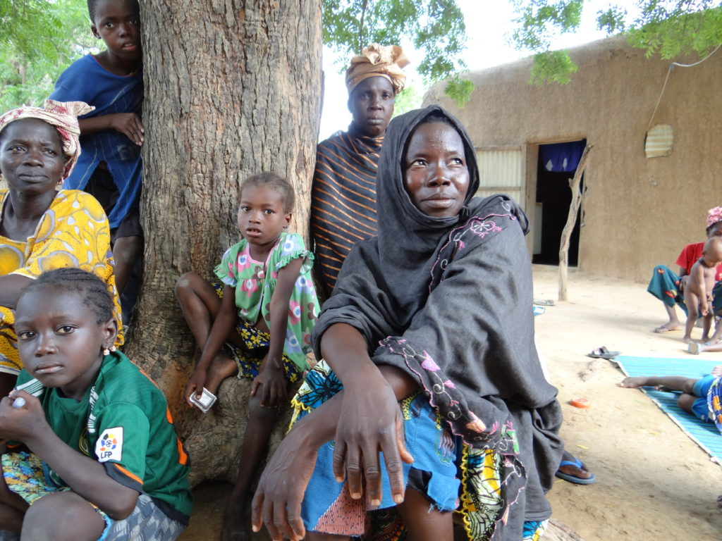 Malian Village visit