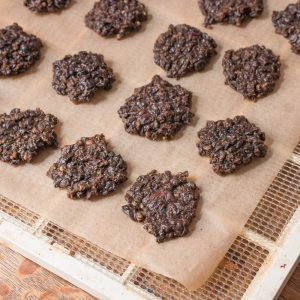 Dried lamb liver patty treat for dogs