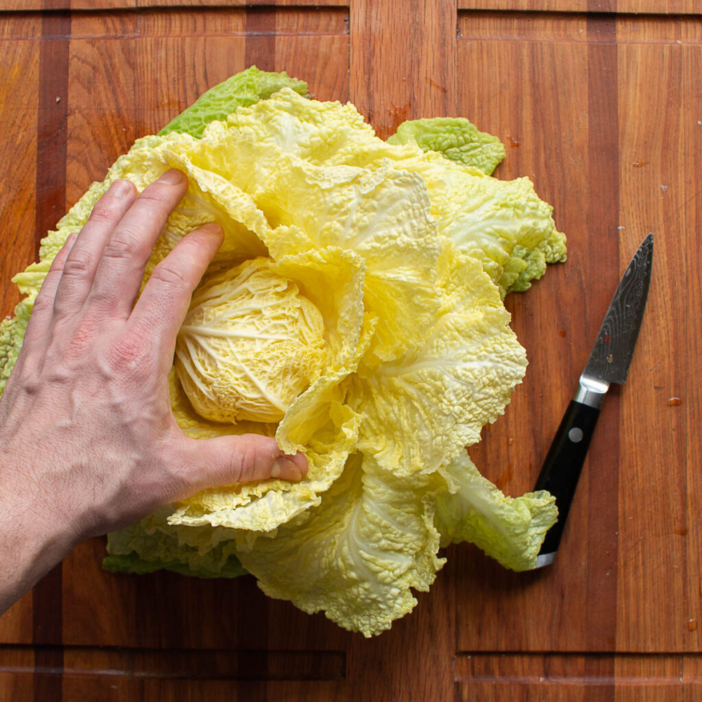 Cabbage stuffed with Lamb and Black Walnuts