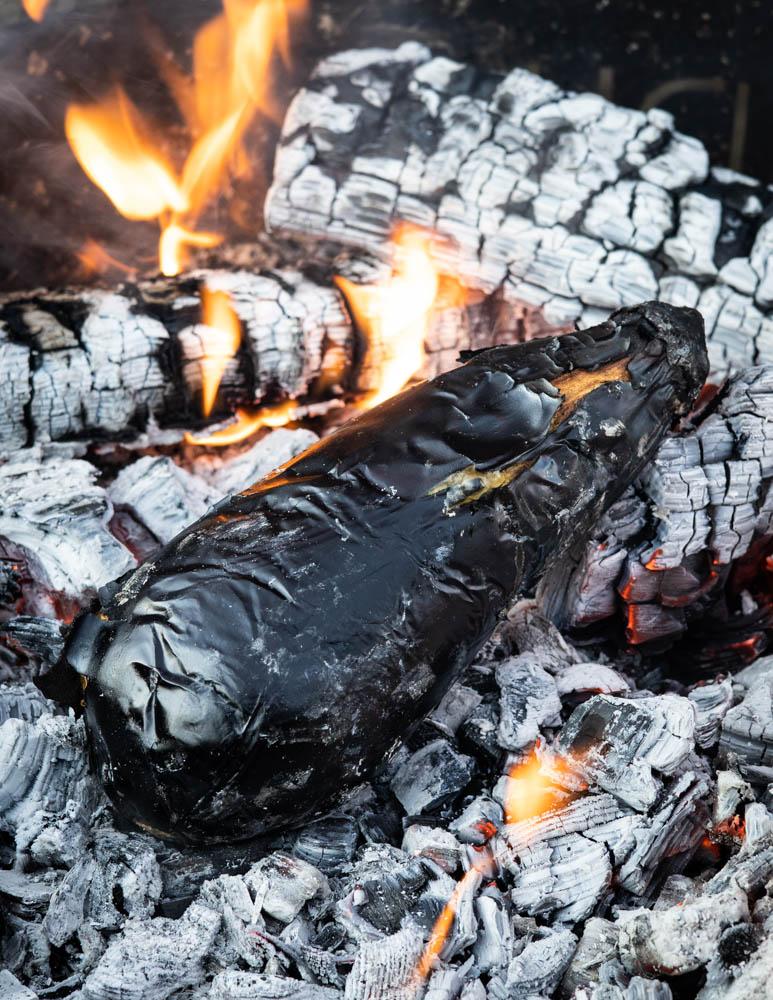Roasting eggplant over coals