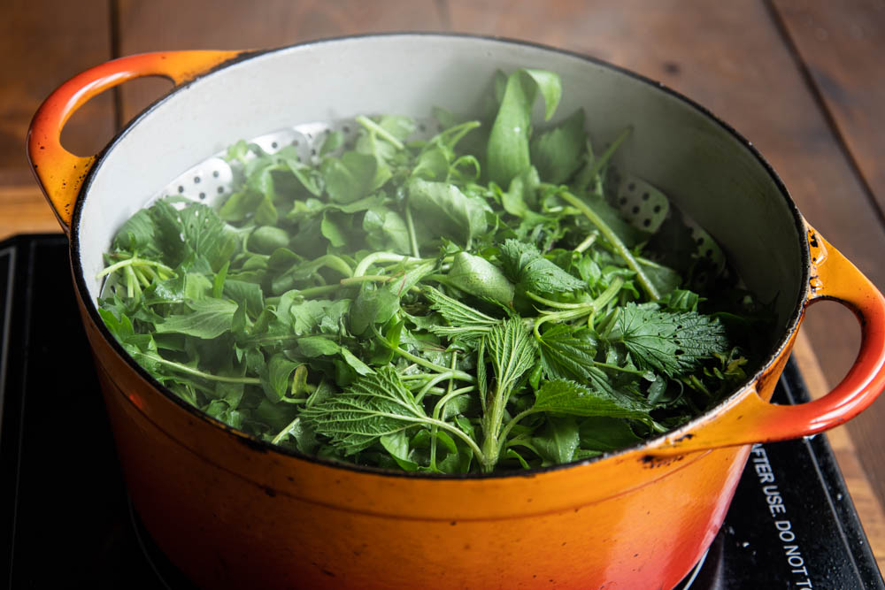 Steaming foraged greens